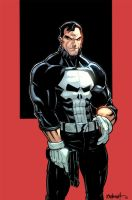 Punisher Colors by RAHeight2002-2012