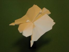 Origami Flying Squirrel 002 by GEN-H