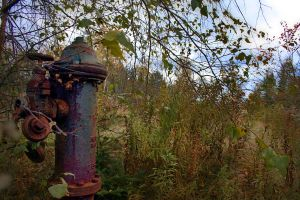 Old Tannery Hydrant by BobVPR