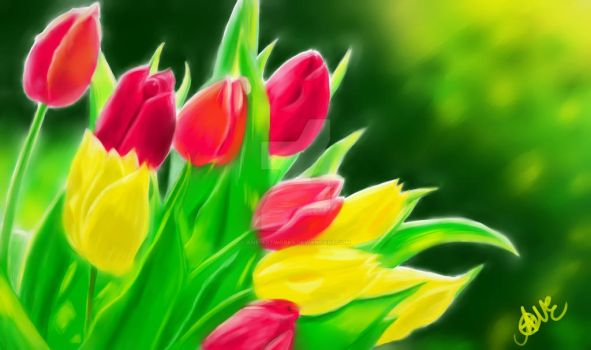Tulips by Ane-Artworks