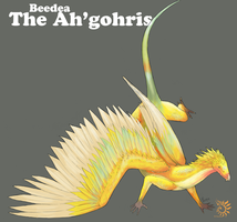 Ahgohris Species Sheet by aireona93
