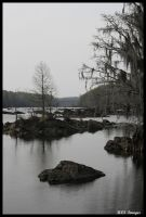 By the river by Alabamaphoto