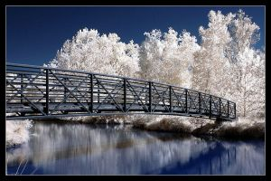 Bridge in false color infrared by snailfan-man