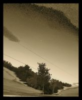 Reflection in a Puddle by sking243