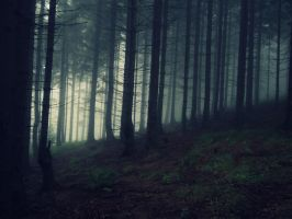 Dark mist by Topielica666