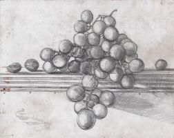 grape_sketch_scn by Mindac