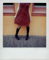 SX-70 polaroid 75 of 100 by lloydhughes