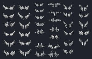 Wing Designs 1 by dashase