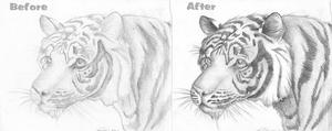 Richard Parker, Then and Now by Ilovedragons1
