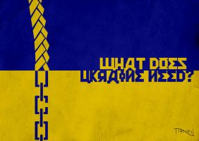 What does Ukraine need? by Thothhotep