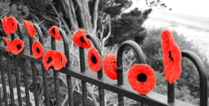 Remembrance poppy by GraceDoragon