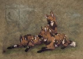 Painted Foxes by ElementalSpirits