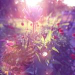 Music Mix Album Summer Photo Graphic 002 by BlackUniGryphon