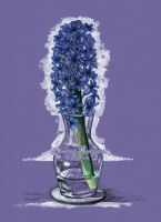 Purple hyacinth by dh6art