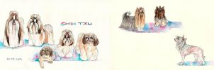 small dogs by ThePyf
