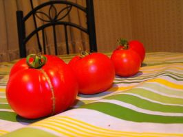 Homegrown Tomatoes by wishmatrix