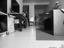 monochrome _ cat's point of view by K4nK4n