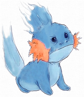 pkmn - so i herd u like mudkip by muura