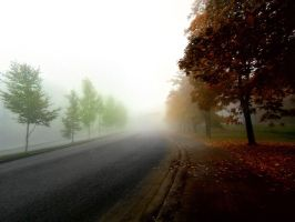 misty autumn road by KariLiimatainen