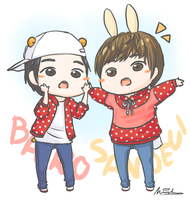 B1A4's BaDeul couple by LadyRawr