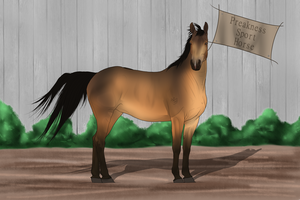 PSH Import 036 by RvS-RiverineStables