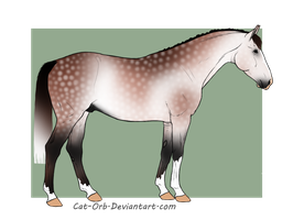 Cutsom Design for Thoroughbreds4Me by Cat-Orb