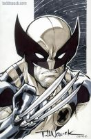 Wolverine Aug 2013 by ToddNauck