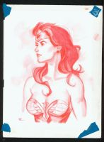 Wonder Woman red watercolor pencil by MichaelDooney