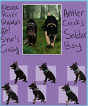 Soldier X Chaise litter OPEN 2 LEFT!! by AntlerCreek