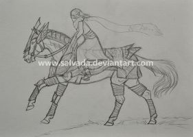 On the run - WIP by Salvada