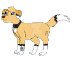 Fursona redrawn and redesign by RaindropLily