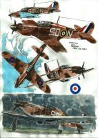 hurricanes RAF color studies by bordon