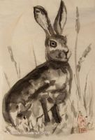 Wild Hare - sumi-e, ink painting by Oksana007