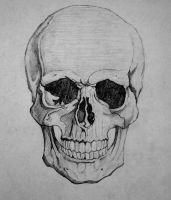 How To Draw A SKULL by HowToDrawItAll