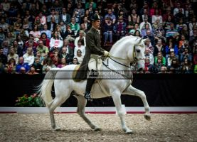 Spanish Riding School 2 by JullelinPhotography