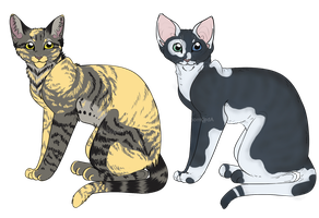 averycakes2000 cat designs by meeshmoose