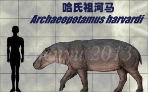 Archaeopotamus harvardi by sinammonite