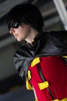 Robin - Young Justice by Nela13