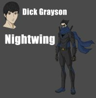Nightwing Redesign by KengT