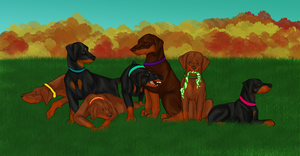 Group Picture! - Finished by stormtime