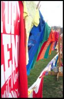 the clothesline project by twistandshout