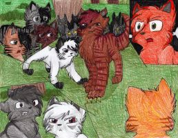 The New Leader of Shadowclan.. by CascadingSerenity