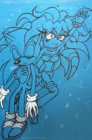 Sonic X Sky- Sky Saves Sonic by Sky-The-Echidna