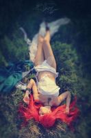 Photoshoot - Red summer 13 by Tanuki-Tinka-Asai