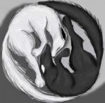 Ying-Yang Wolves by TEENTITANSGO123