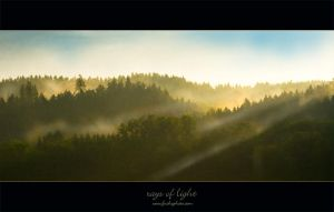 rays of light by fuchsphoto