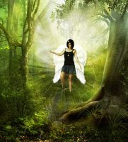 Forest Angel by AhMeD-19