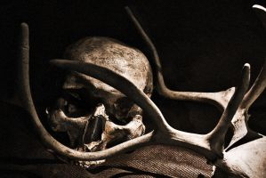 The Bone-Mothers Cold Caress by skorpiusdeviant