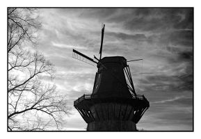 Windmill Sanssouci by wolfmagus