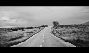 Long way by Vrohi